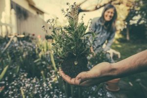 What Is Horticultural Therapy?