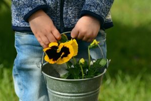 Benefits of Horticultural Therapy for Children with Autism connections therapy center
